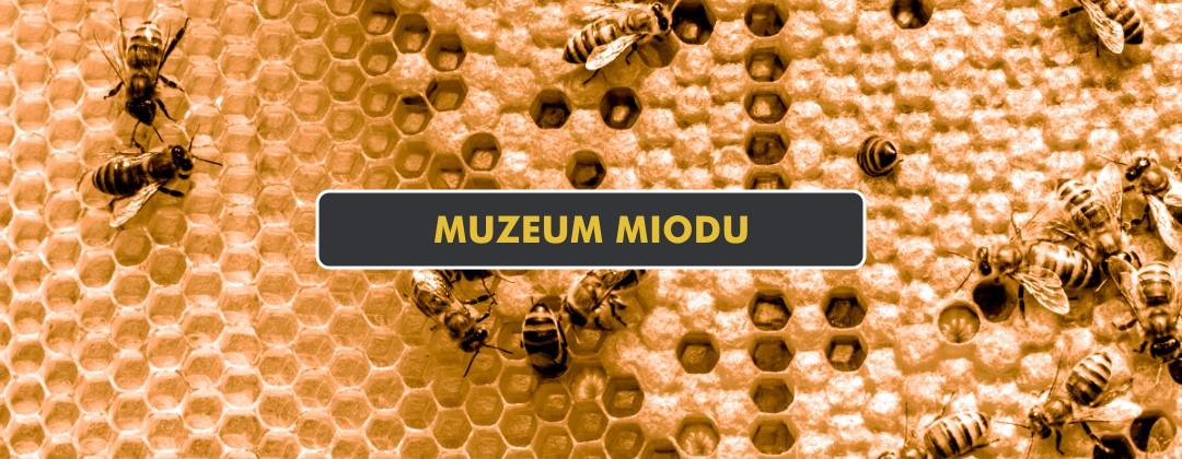 Muzeum Miodu w Pszczółkach